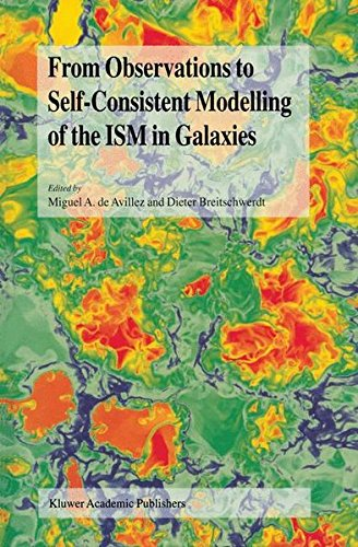 Read Online From Observations to Self-Consistent Modelling of the ISM in Galaxies (NATO Science Series II: Mathematics, Physics & Chemistry) pdf epub
