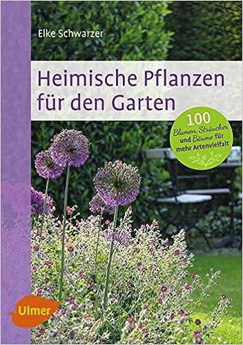 Heimische Pflanzen heimische pflanzen für den garten 9783800184552 amazon com books