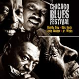 Chicago Blues Festival.