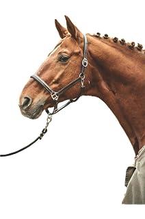 German Riding Lederhalfter Exquisit Cob braun