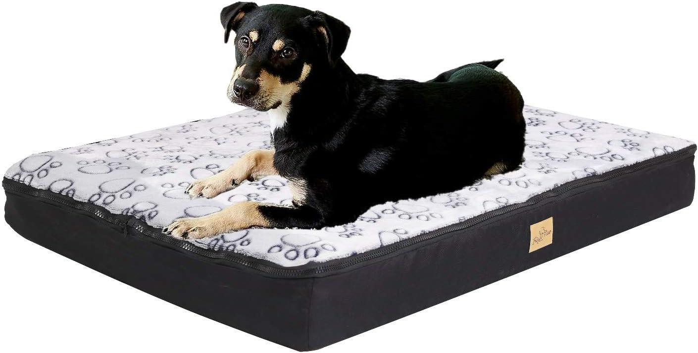 BingoPaw Cama Perro Ortopédica Grande, Colchoneta Perro Impermeable con Funda Desenfundable y Lavable, Colchón Perro de Espuma, 80 x 60 x 10cm