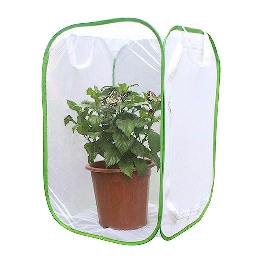 EMVANV Jaula de Malla para Insectos, Invernadero para Plantas ...