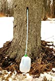 Maple Syrup Tree Tapping Kit (Pack of 10) Includes Tree Saver Taps Spiles plus Lifetime Taps and Tubing - 3-Foot Drop Line Tubes