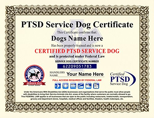 - PTSD Service Dog Certificate - We customize it with Dogs and Handlers Name - 8.5 by 11 inches