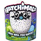 Hatchimal Draggle Blue/green