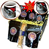 3dRose Holidays, Christmas Cat, Coffee Gift Baskets