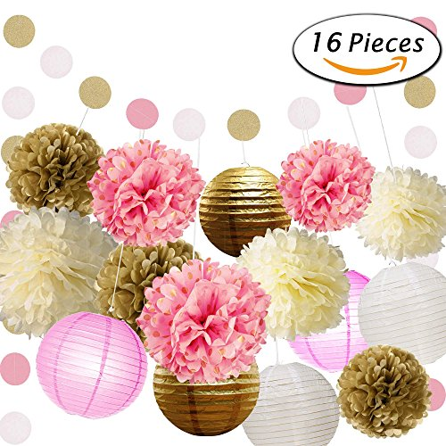 Paxcoo Tissue Flowers Lanterns Decorations product image