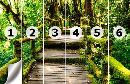 Fototapete urwald  Papiertapete Foto-Tapete Brücke durch den Urwald KT486 Dschungel ...