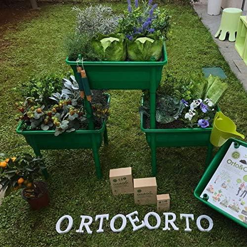 Orto&Orto sistema di orto modulare per ORTO URBANO: Amazon.es: Jardín