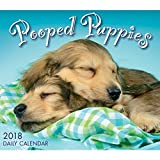 Pooped Puppies 2018 Daily Desk Boxed Calendar
