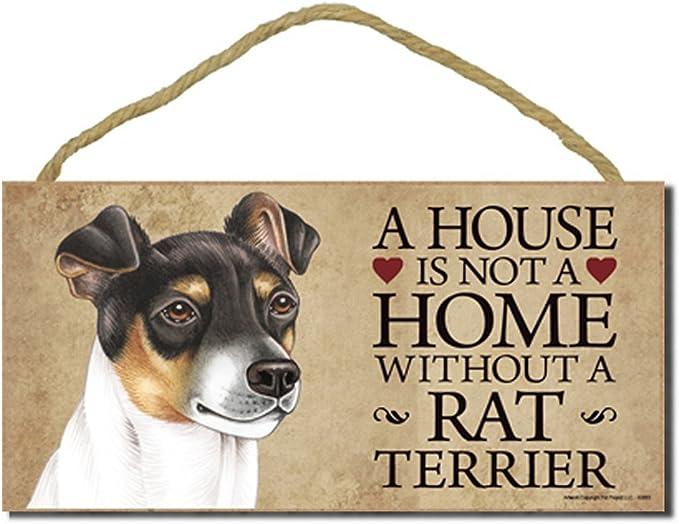 Rata Terrier