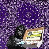 Dip Ape Purple Bandana Illusion Hydrographics Water Transfer Hydro Dip Dipping Kit