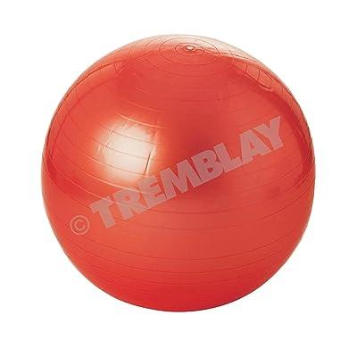 Ballon de gym - Balle de gymnastique - ball - yoga - grossesse - Ø 65 cm