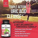 Organic Tart Cherry Extract Capsules Uric Acid
