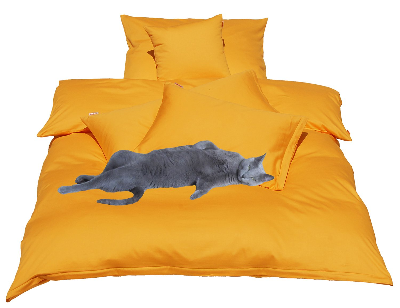 1a6d712b81 beties Mako Satin Bettbezug 135 x 200 cm (ohne Kissen) in 9 eleganten Uni  Farben Gold-Gelb 1 Stück (wählen Sie Ihr Lieblingskissen extra dazu):  Amazon.de: ...