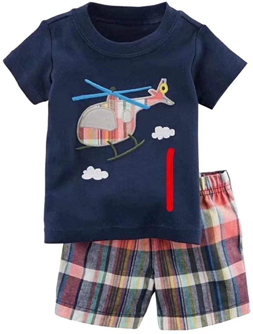 Toddler Boy's Short Sleeve T-Shirt and Short Outfit Set