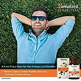 Himalaya UriCare/Cystone, Caffeine-Free Kidney