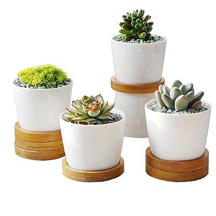 Amazon 1 set has 4 flower pots white ceramic plant pot fleshy 1 set has 4 flower pots white ceramic plant pot fleshy decorative flower pot suitable for mightylinksfo
