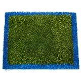 ZestyNest Outside & Inside Grass Doormat - 24