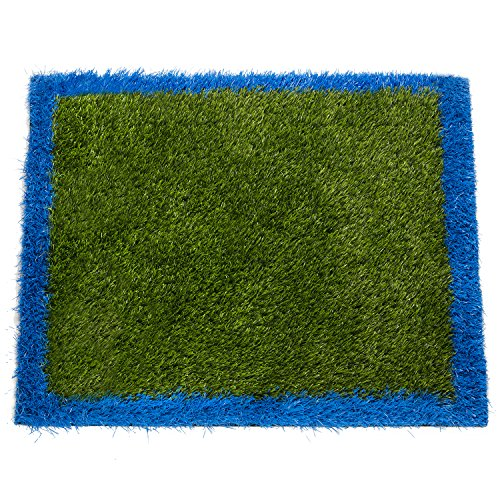 Florida Door Mat (Outside & Inside Grass Doormat - 24