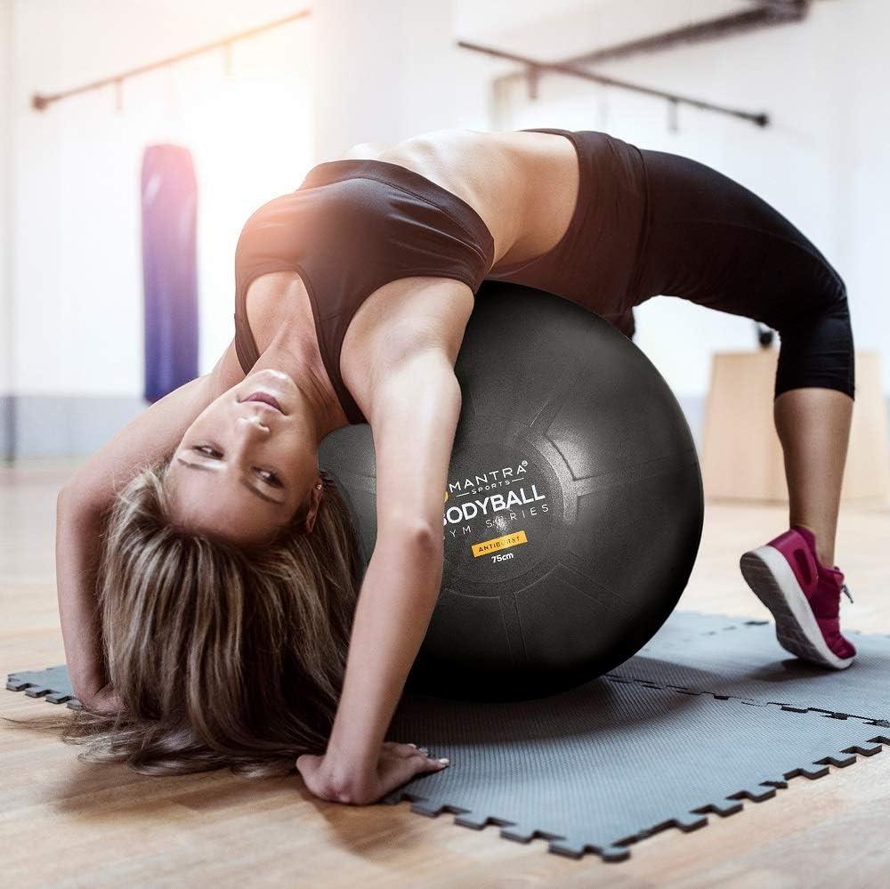 Amazon.com: Exercise Ball Chair - 65cm & 75cm Yoga Fitness ...