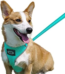 AIR Dog Harness Leash Set, Puppy Leash Harness, No-Choke Dog Harness, Mesh Dog Harness, Comfortable Dog Harness, Plus 4 ft Reflective Dog Leash with Padded Handle