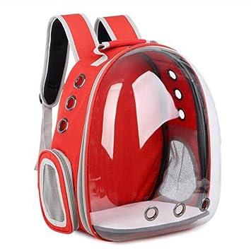 WENXX Mochila Panorámica Transparente para Mascotas, Maleta Portátil para Llevar Al Aire Libre, Maletas para Perros Y Gatos,Red: Amazon.es: Hogar