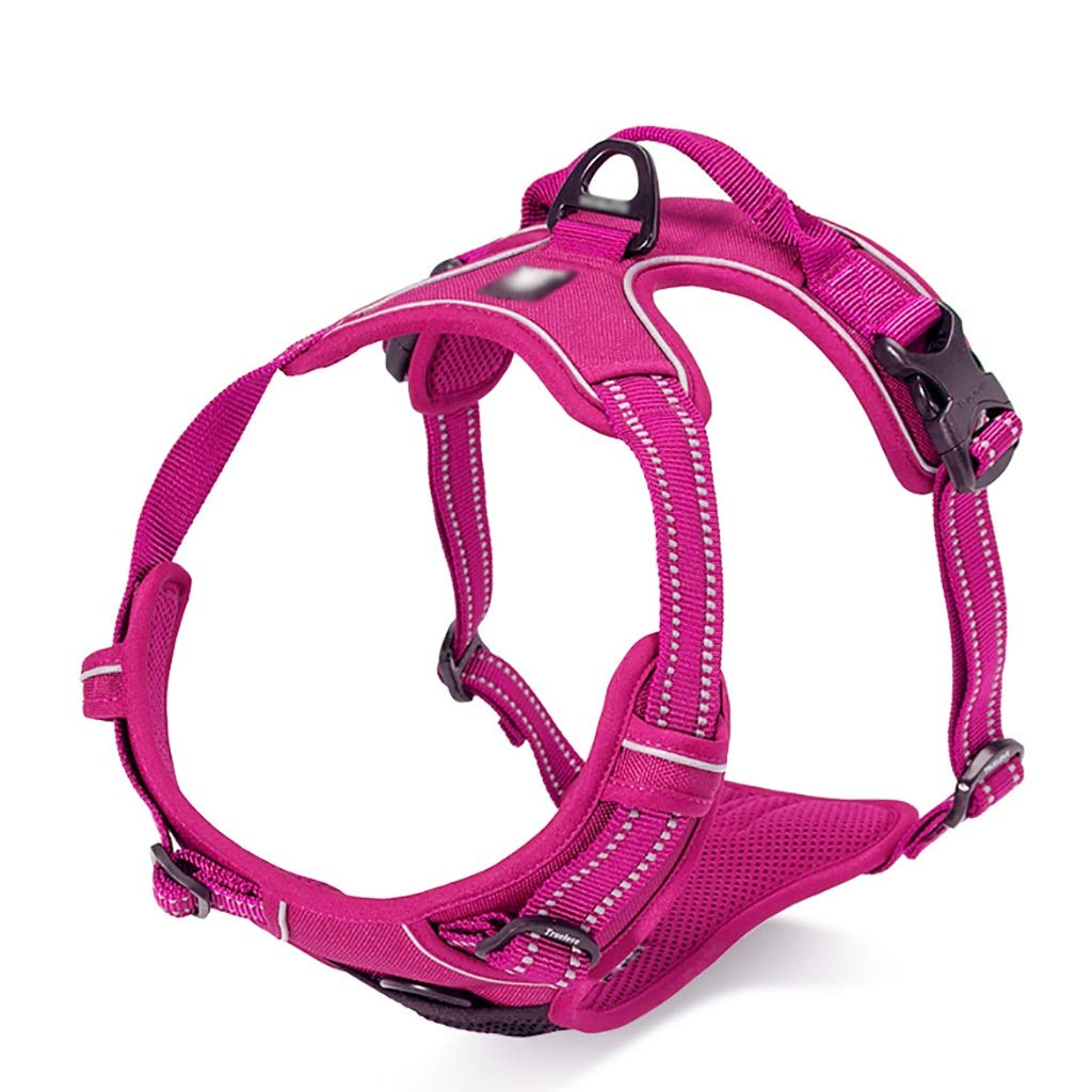 Pet chest strap traction rope chest back adjustable vest-style adjustable reflective strips soft comfortable sturdy durable (color   B, Size   XS 33-43CM)