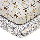 Little Love by NoJo 2 Piece Sheet Set, Aztec
