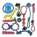 Dog Rope Toys For Aggressive Chewers – Set Of 11 Indestructible Dog Toys – Bonus Giraffe Rope Toy - Benefits Nonprofit Dog Rescue