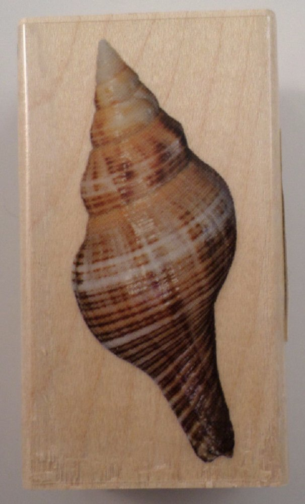 Inkadinkado Nautical Ocean Sea Shell Spiral Conch Wooden Rubber Stamp