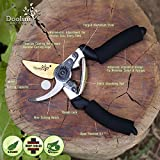 Premium-Titanium-Pruning-Shears-By-Doolini-Nature-Stainless-Blade-Soft-Cushion-Grip-Safety-Lock-Razor-Sharp-SecateursTop-Garden-Bypass-Hand-Pruners-Ergonomic-Comfort