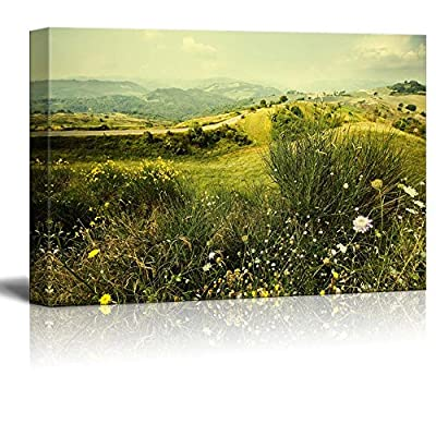 Canvas Prints Wall Art - Alpine Meadow Wild Flowers Mountains - 24