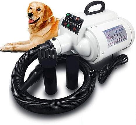 Peluquería para Mascotas, Secador De Cabello De Alta Potencia, Doble Cabeza Motor Aguaperro Grande Mascota para Perro Máquina De Agua: Amazon.es: Deportes y aire libre