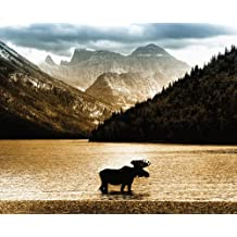 JP London MD3A031 8.5-Feet High by 10.5-Feet Wide Removable Banff Moose Full Wall Country Mural