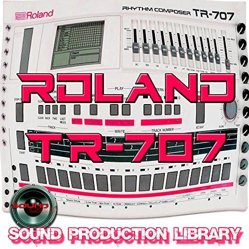 for ROLAND TR-808 - Large Original 24bit WAVE Studio Samples/Loops Studio Library on DVD or download by SoundLoad (Image #5)