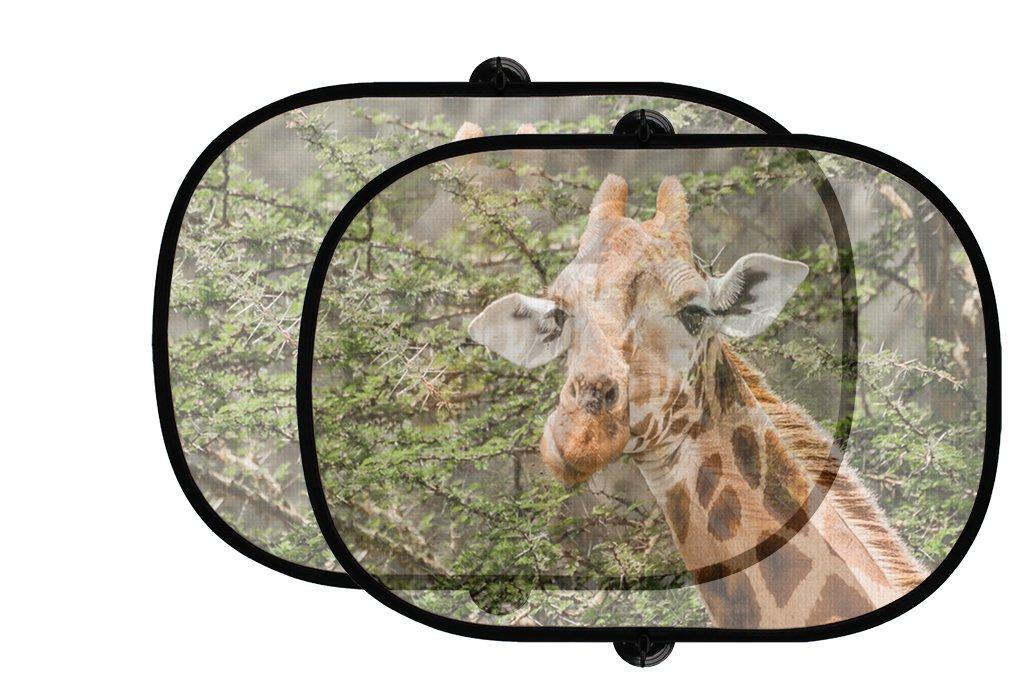 Giraffe eatingアカシアの葉2個折りたたみ式自動ウィンドウサンシェードメッシュ B07597T5C5