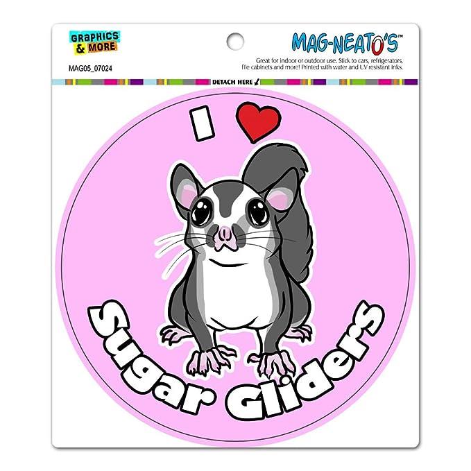 amazon com i heart love sugar gliders pink circle mag neato s