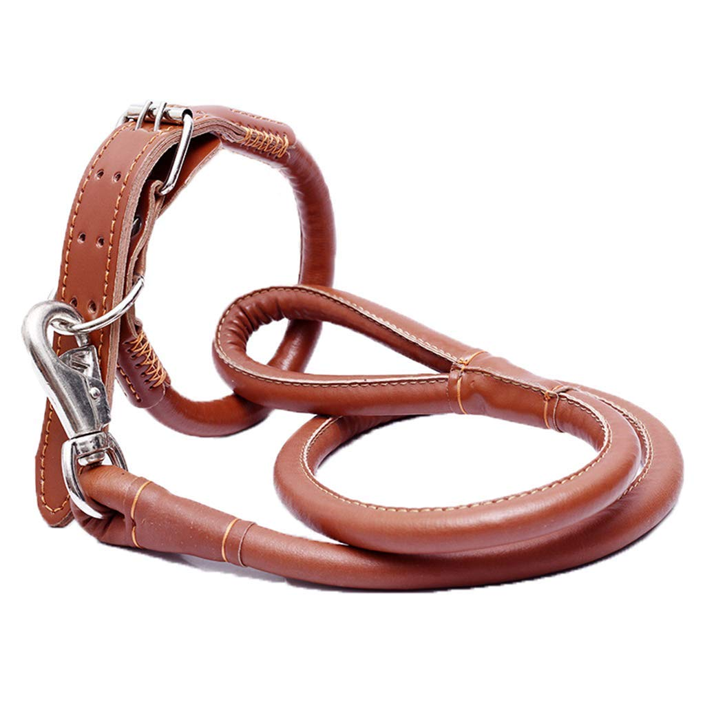 M(1020kg) Dog Leather Leash 1.2M Long Handmade Leather Adjustable Hands Free Lead Leash for Running Walking, Hiking (Brown)