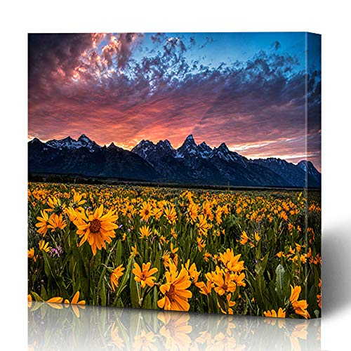 (Ahawoso Canvas Print Wall Art 16x16 Inch Field Wildflowers in Wyoming Grand Teton Park Under Fiery Sunset Design Modern Artwork Printing Home Decor Wrapp Gallery Painting)