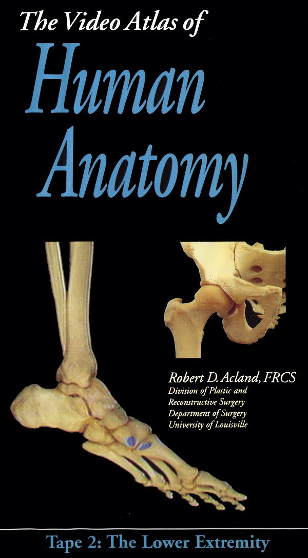 Amazon Aclands Video Atlas Of Human Anatomy The Lower