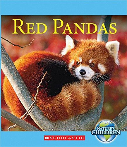 Red Pandas (Nature