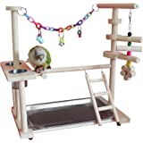 """QBLEEV Parrot Wood Stand Perch Bird Playstand Playground Playgym Playpen Ladder with Toys Exercise Play (Include a Tray) (16""""L10""""W15""""W)"""