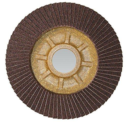 CS Unitec 93818 PLANTEX Tiger Shark Flap Disc for Grinding Aluminum Ceramic//Corundum 5//8 Arbor 4 Diameter Pack of 10 4 Diameter 5//8 Arbor Eiseblatter 80 Grit