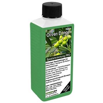 Berühmt Oliven-Dünger HIGH-TECH Olea NPK, für Pflanzen in Beet und Kübel &SM_75