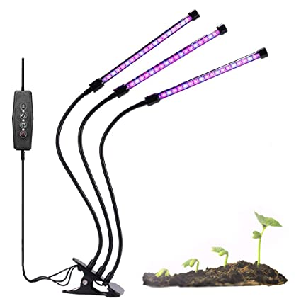 Amazon.com: Purple Reign - Sistema Horticultura Apollo de 2 ...