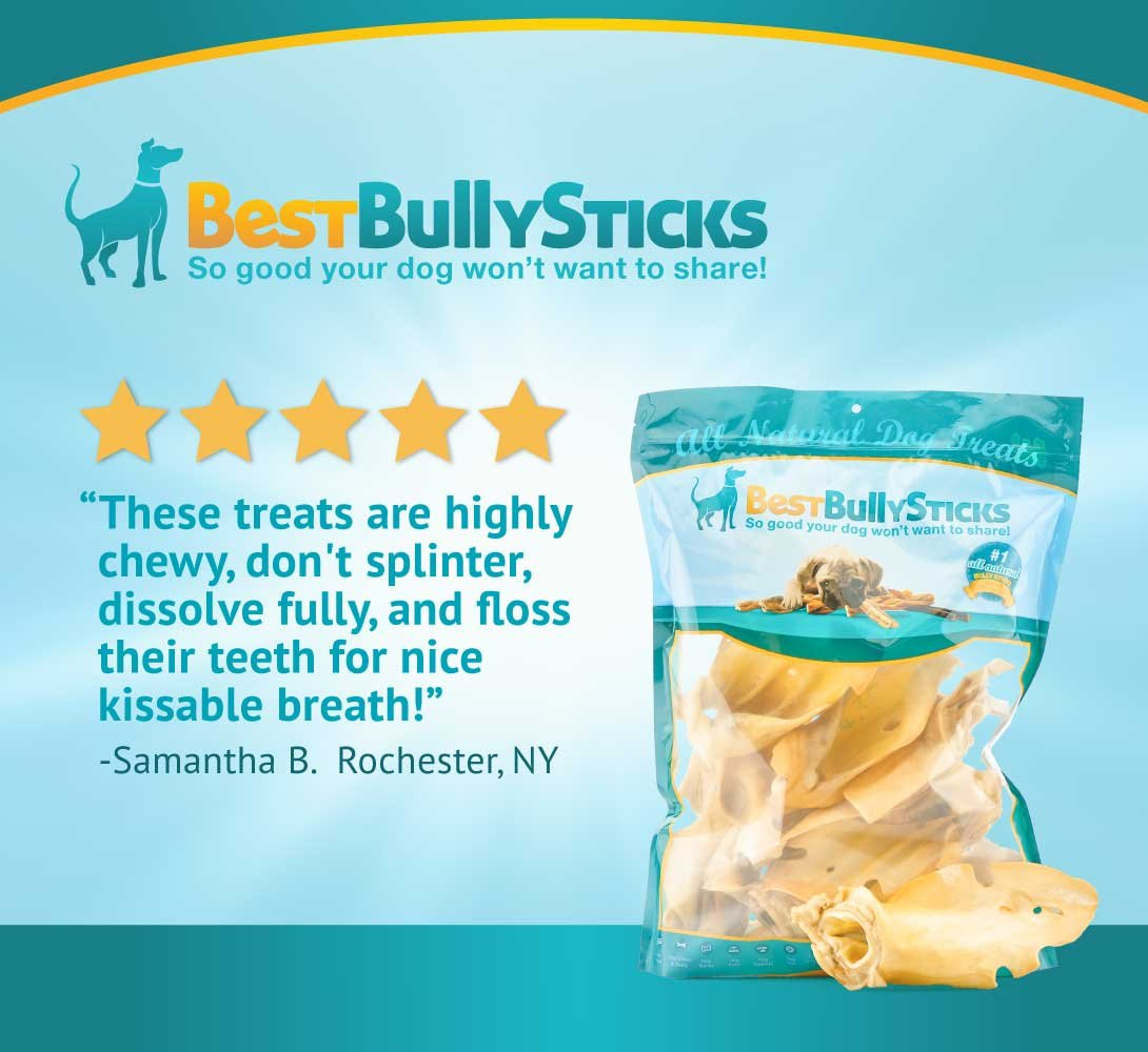 Best Bully Sticks Prime Thick-Cut Cow Ear Dog Chews by (12 Pack) Sourced From All Natural, Free Range Grass Fed Cattle with No Hormones, Additives or Chemicals - Hand-Inspected and USDA/FDA Approved by Best Bully Sticks (Image #6)