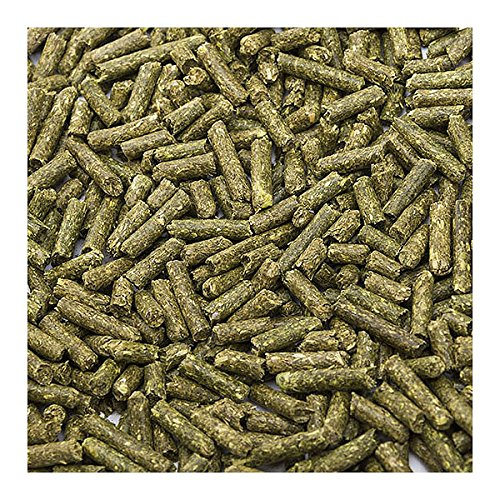 Image of Small Pet Select Rabbit Food Pellets, 25 Lb.