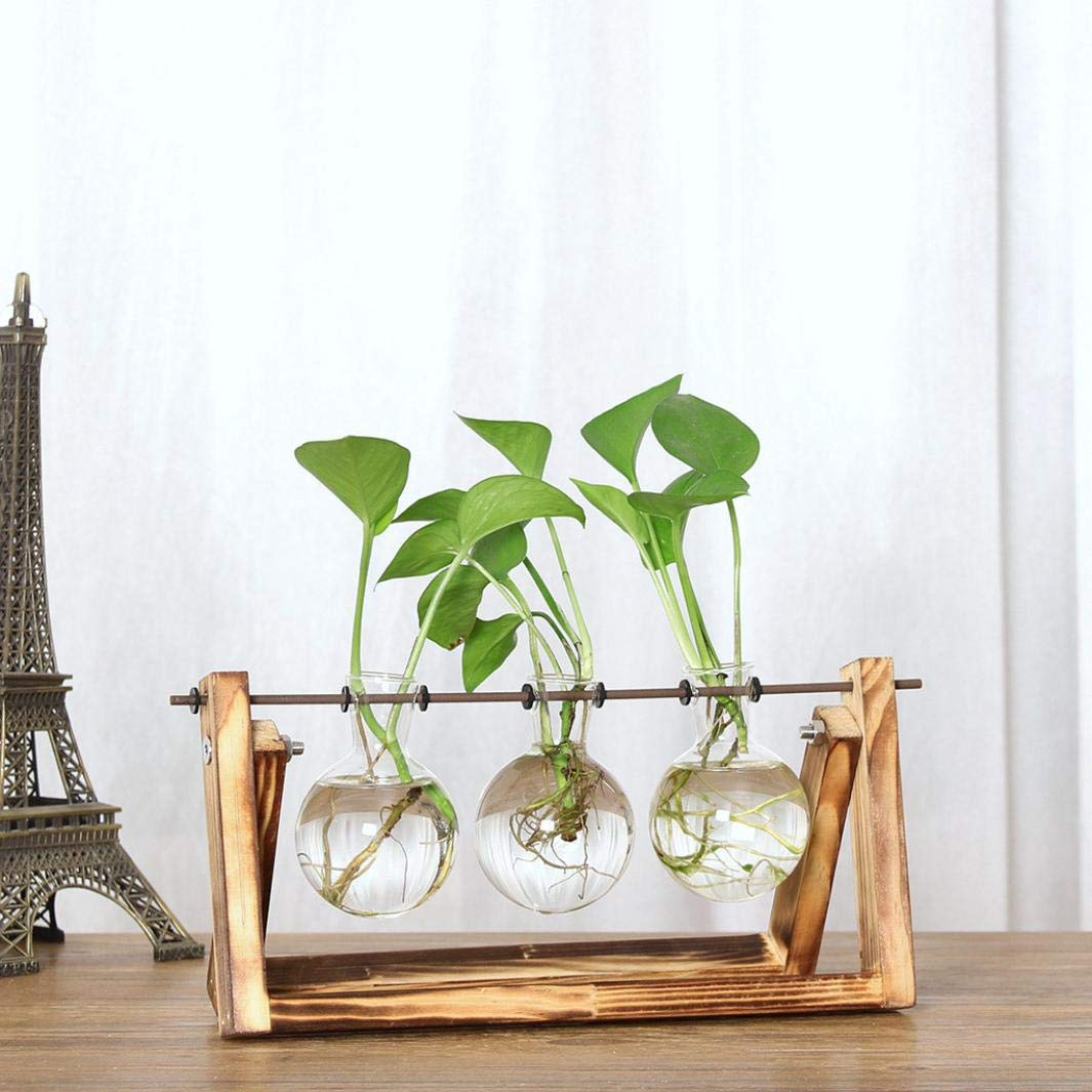 Kemilove Creative Hydroponic Plant Transparent Vase Wooden Frame Coffee Shop Room Decr