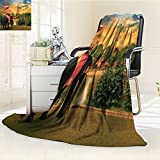 Digital Printing Blanket Dressing With Thai Kingdom Tradition Pagoda In Ayuthaya Summer Quilt Comforter
